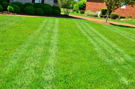 lawn care service prices milton ga