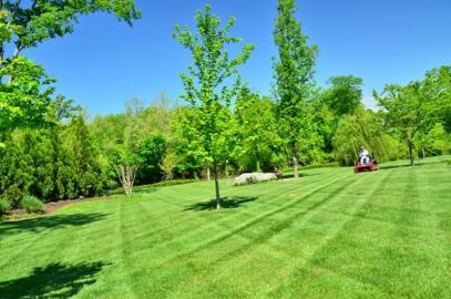 lawn service milton ga