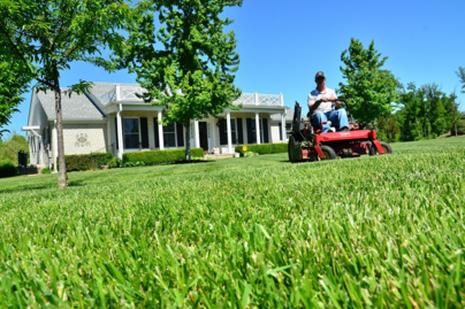 lawn maintenance milton ga