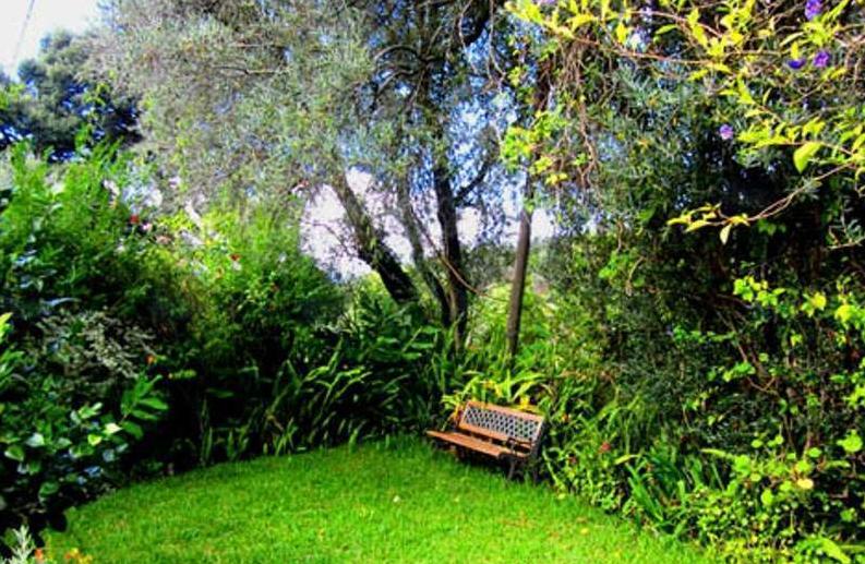 best Lawn care services milton
